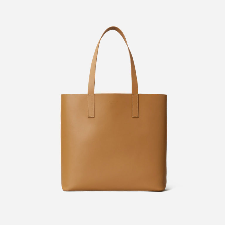 Everlane The Day Square Tote in Saddle