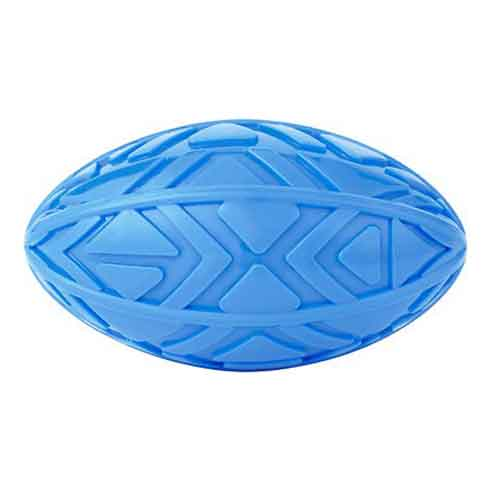 All Kind Squeaking Football Dog Toy