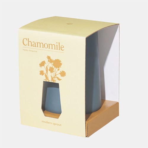 Modern Sprout Chamomile Indoor Garden Kit