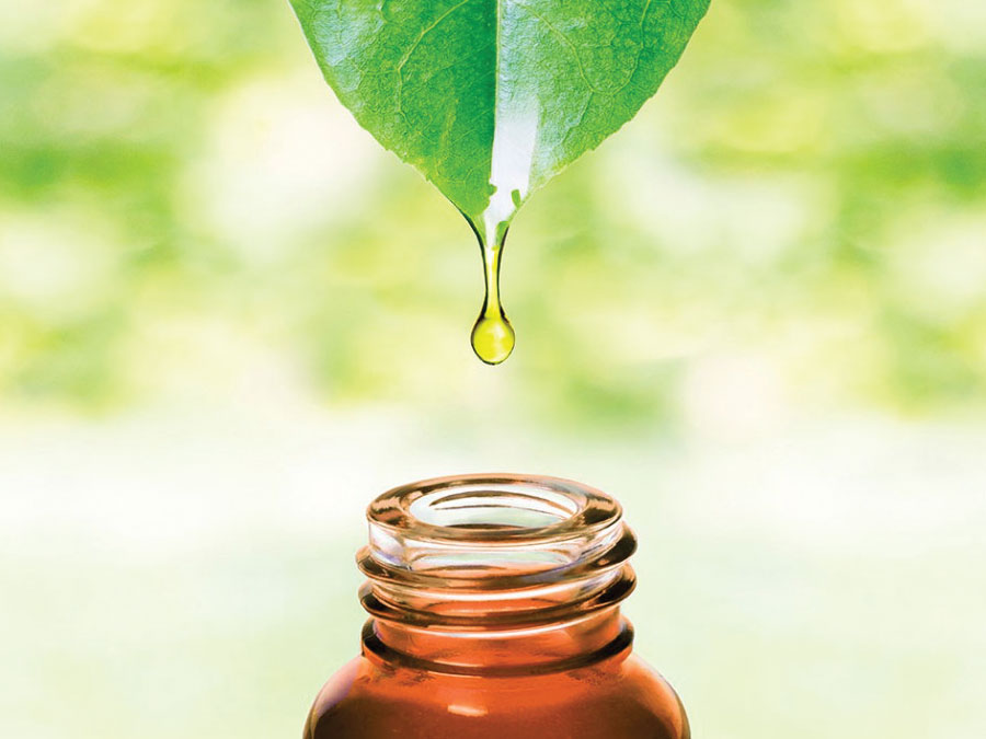 Major Tea Tree Oil Benefits You Need to Know