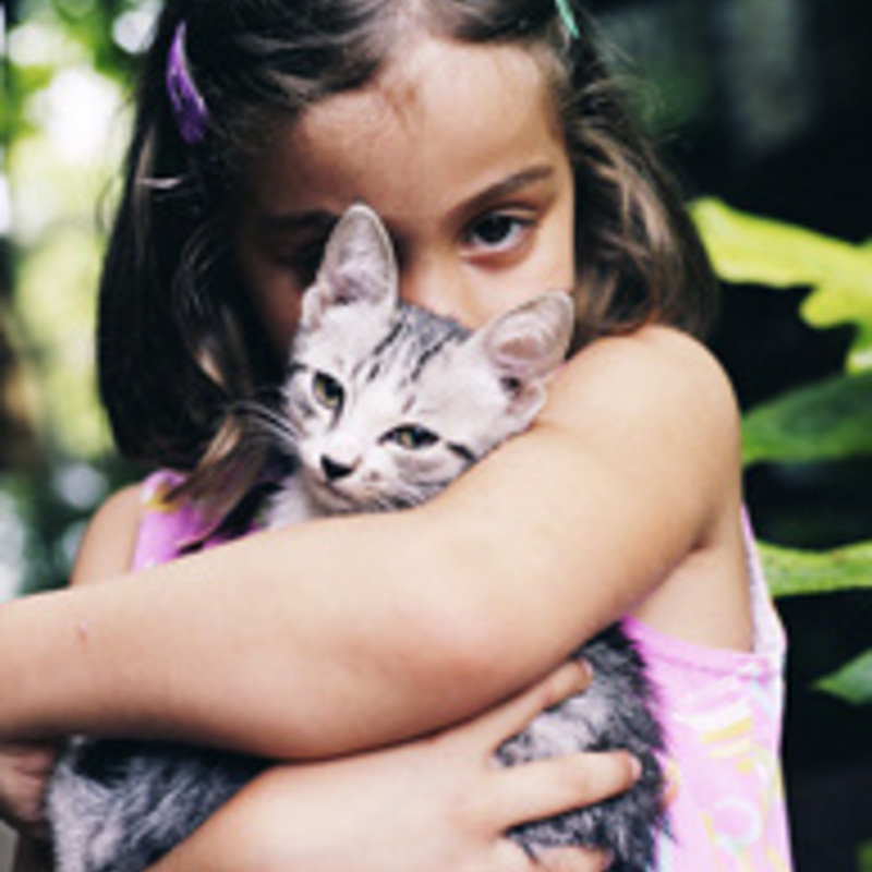The Importance of a Family Pet