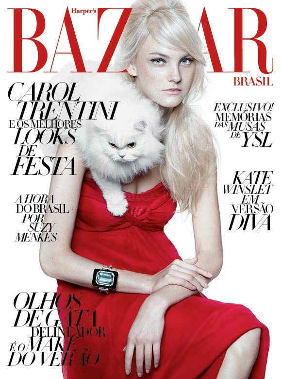 Babies and Cats: December's Hottest Accessories