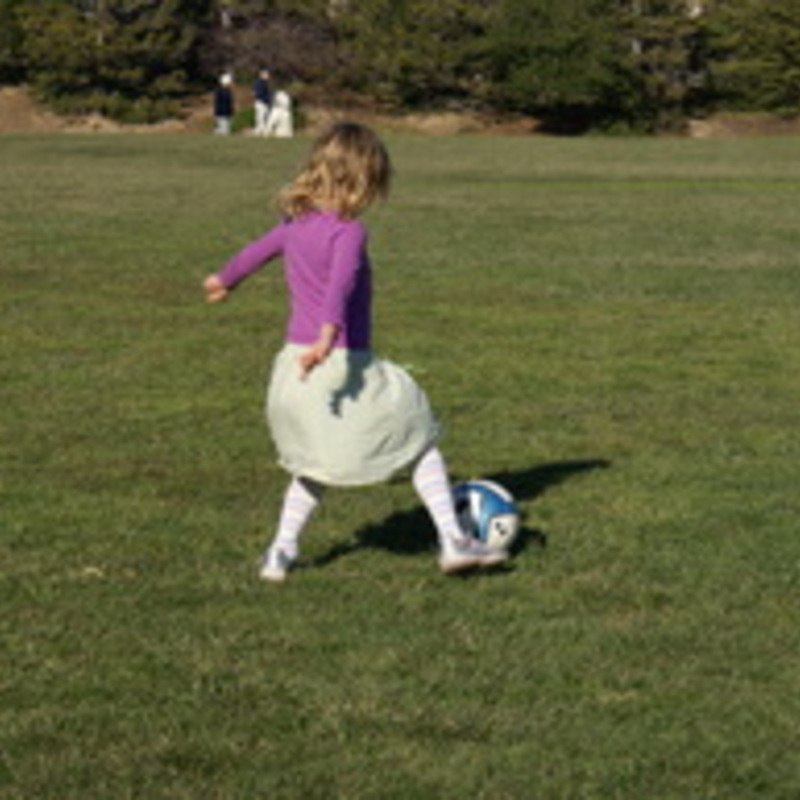 Dodging Golf Balls and Soccer Moms: Tale of a Working Single Mom