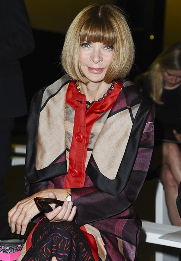Anna Wintour Coming to TV