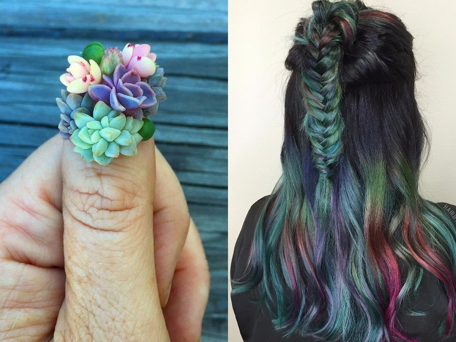 Bold Succulent Beauty Trends Are Sprouting Up Everywhere