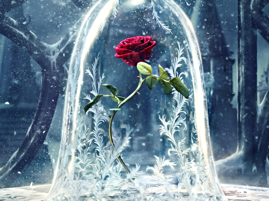 Storybook Cosmetics's New Rose Makeup Brushes Are Worthy Of 'Beauty And The Beast'