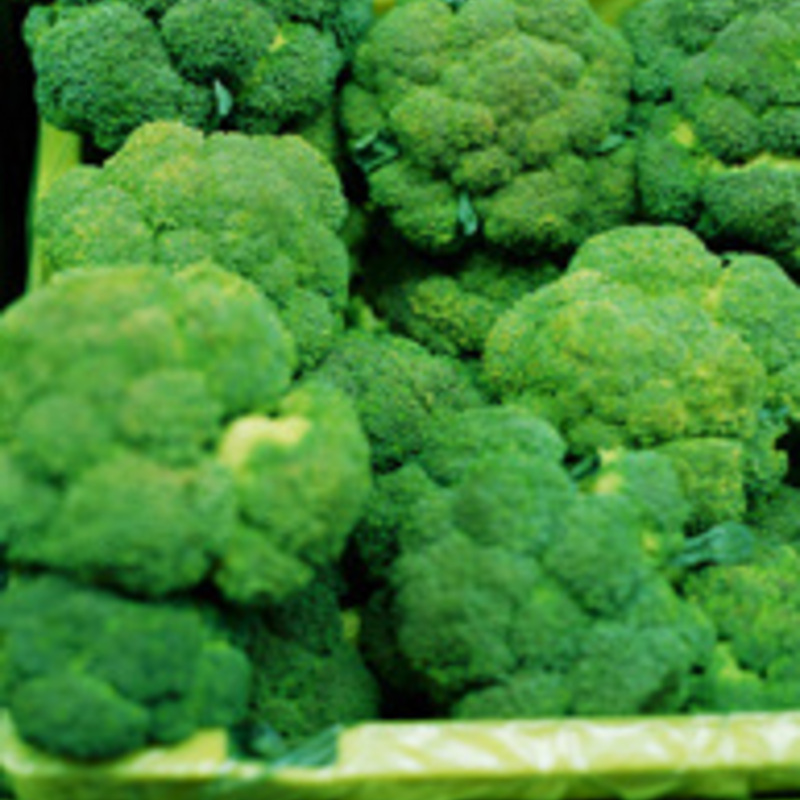 An Anti-Cancer Diet: The Foods You Need Right Now