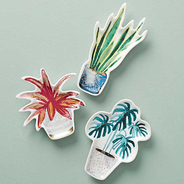 various house plant themed trinket dishes