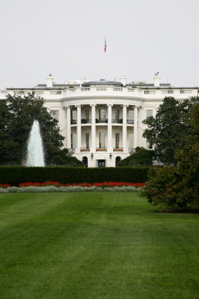 Presidential Celebs: Who'd Look Good in the Oval Office?